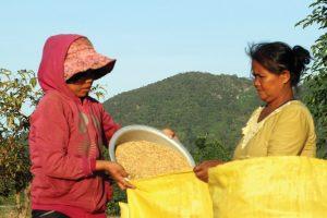 Cơ hội thoát nghèo bền vững từ xuất khẩu lao động
